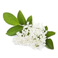 Elderflower Clear Esssence 50ml